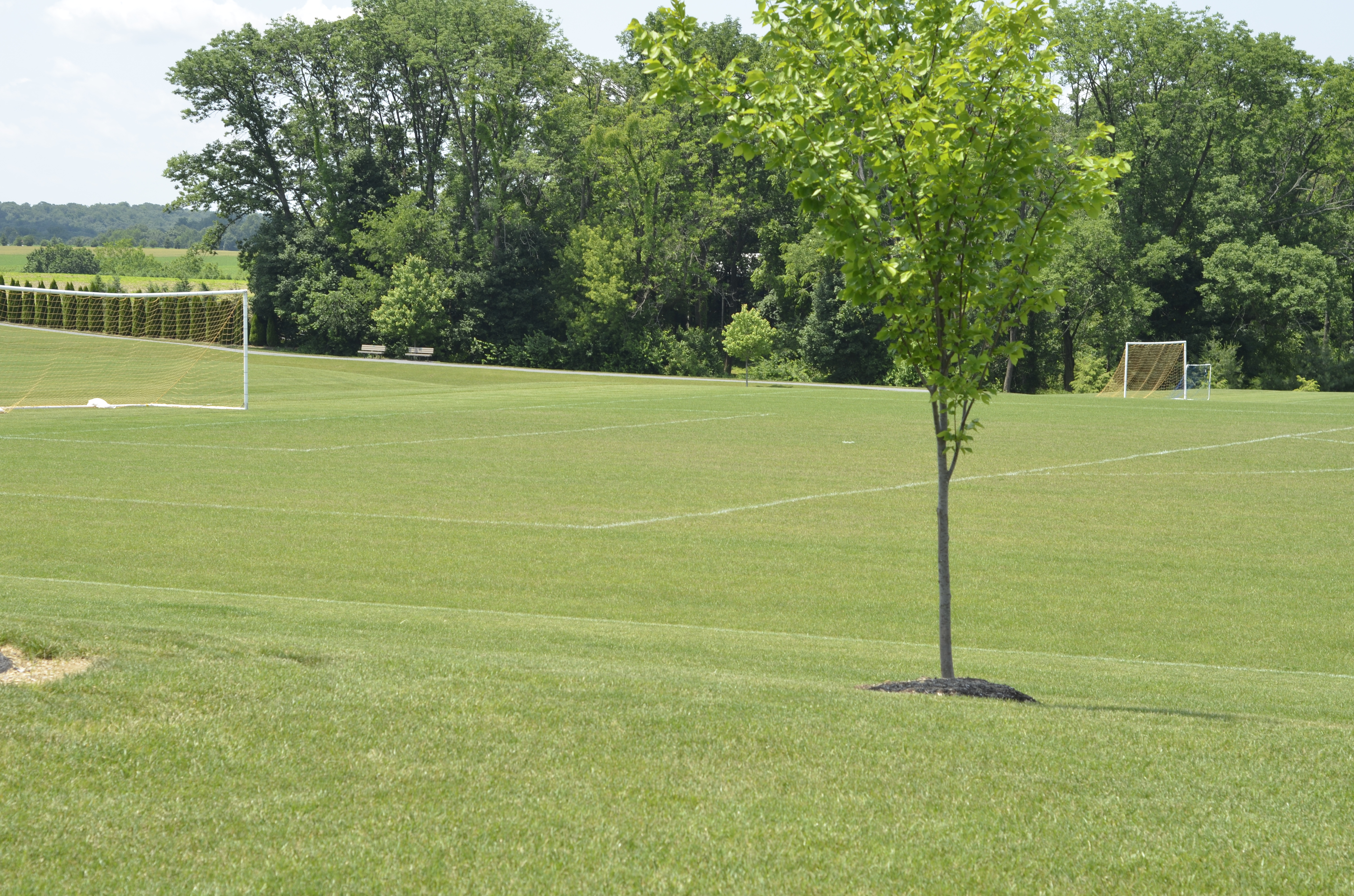 Elizabeth Township | Warwick Regional Recreation Commission